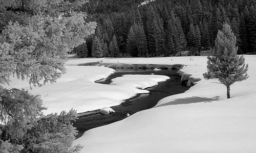 Winter Fishing Report in Montana
