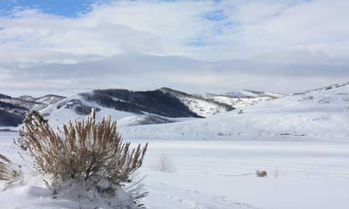 Ice Fishing and Fly Fishing Reports in Montana