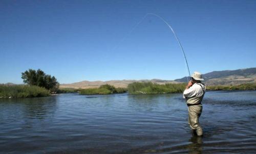 Whitefish Fishing at Flathead Lake in Montana