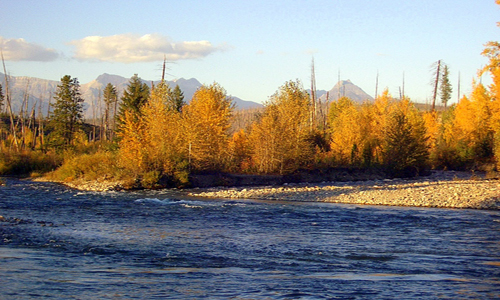 Flathead River Fishing