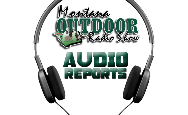 Weekly montana hunting and fishing reports feb 11th for Hunting and fishing forecast