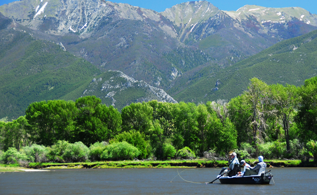Good fishing opportunities in the butte and bozeman for Bozeman fishing report