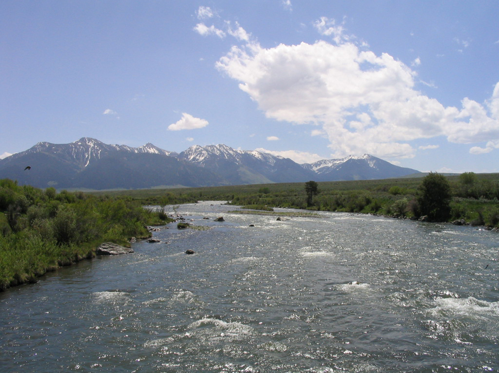 Hatching like crazy on the beaverhead butte and bozeman for Bozeman fishing report