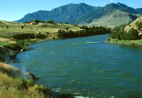 Great dry fly fishing opportunities in the bozeman area for Bozeman fishing report