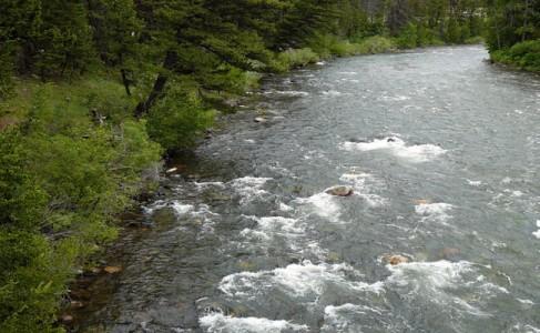 Gallatin_River
