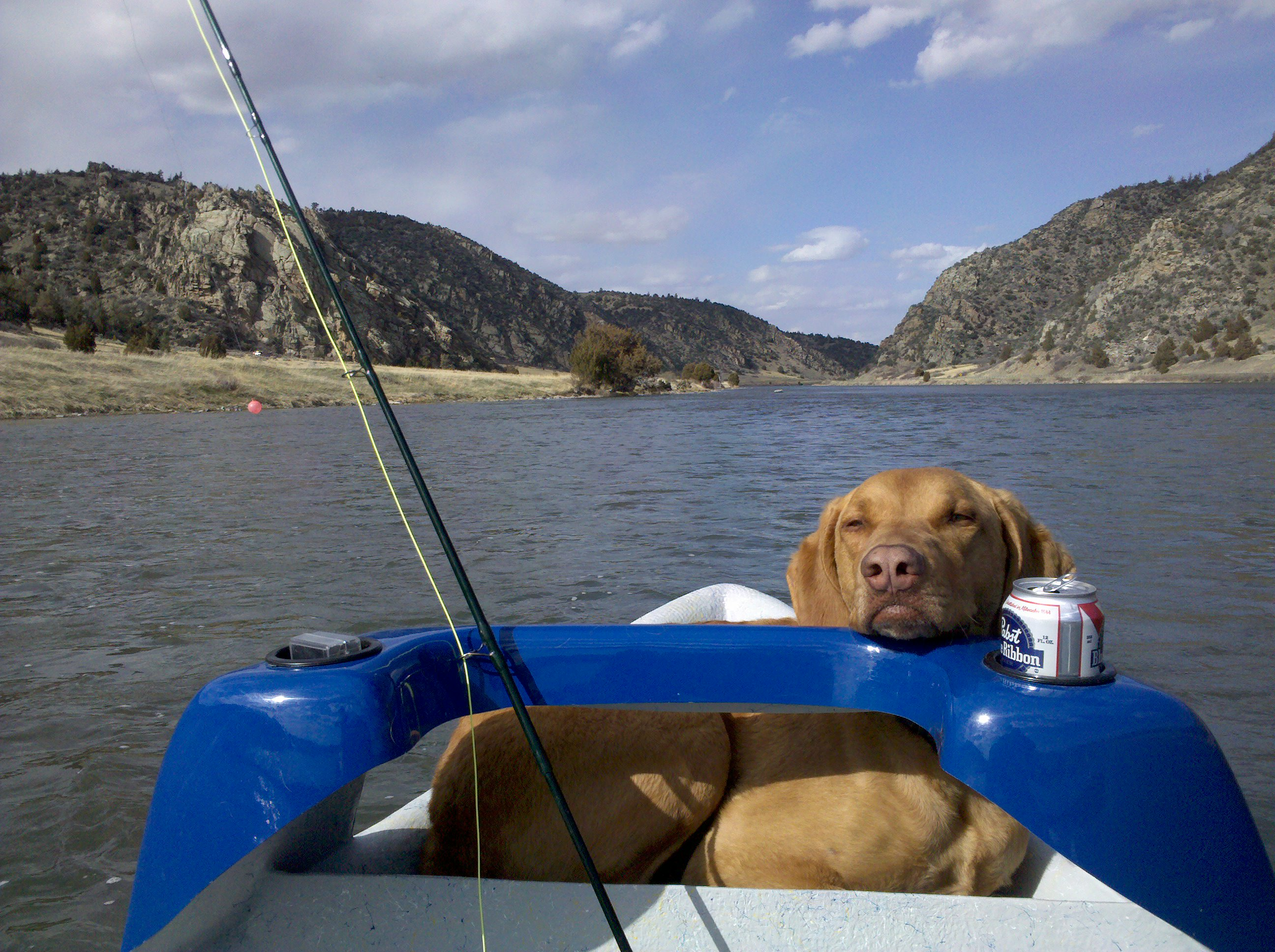 The dog days of summer good fishing and archery for Good fishing days