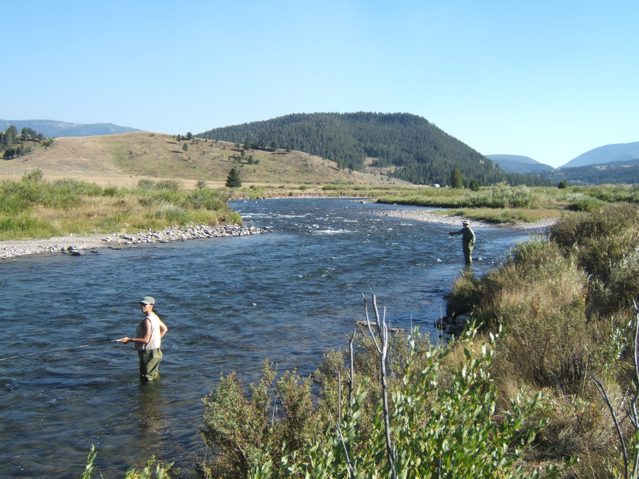 Cooler nights equals better fly fishing bozeman area for Bozeman fishing report