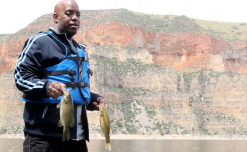 Bighorn bass