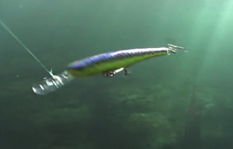 Montana Rapala Fishing