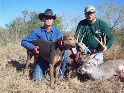 Hindes-Greg-Baker-deer-blog