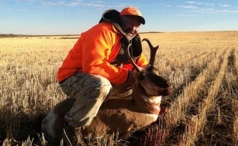 cap antelope