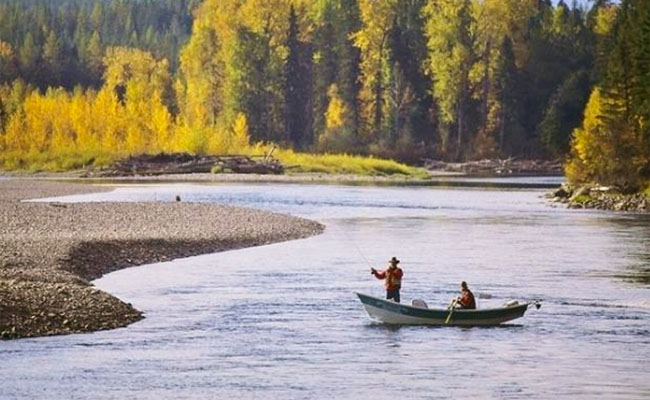 Whitefish still biting on flathead river montana fishing for Whitefish montana fishing