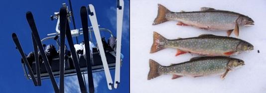 Bob ward sons butte bozeman recreation report 1 17 13 for Bozeman fishing report