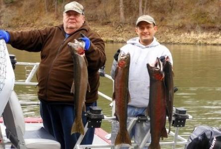 Idaho steelhead report montana hunting and fishing for Idaho fish and game hunter report
