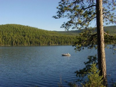Northwest and North Central Montana Fishing Report | Montana