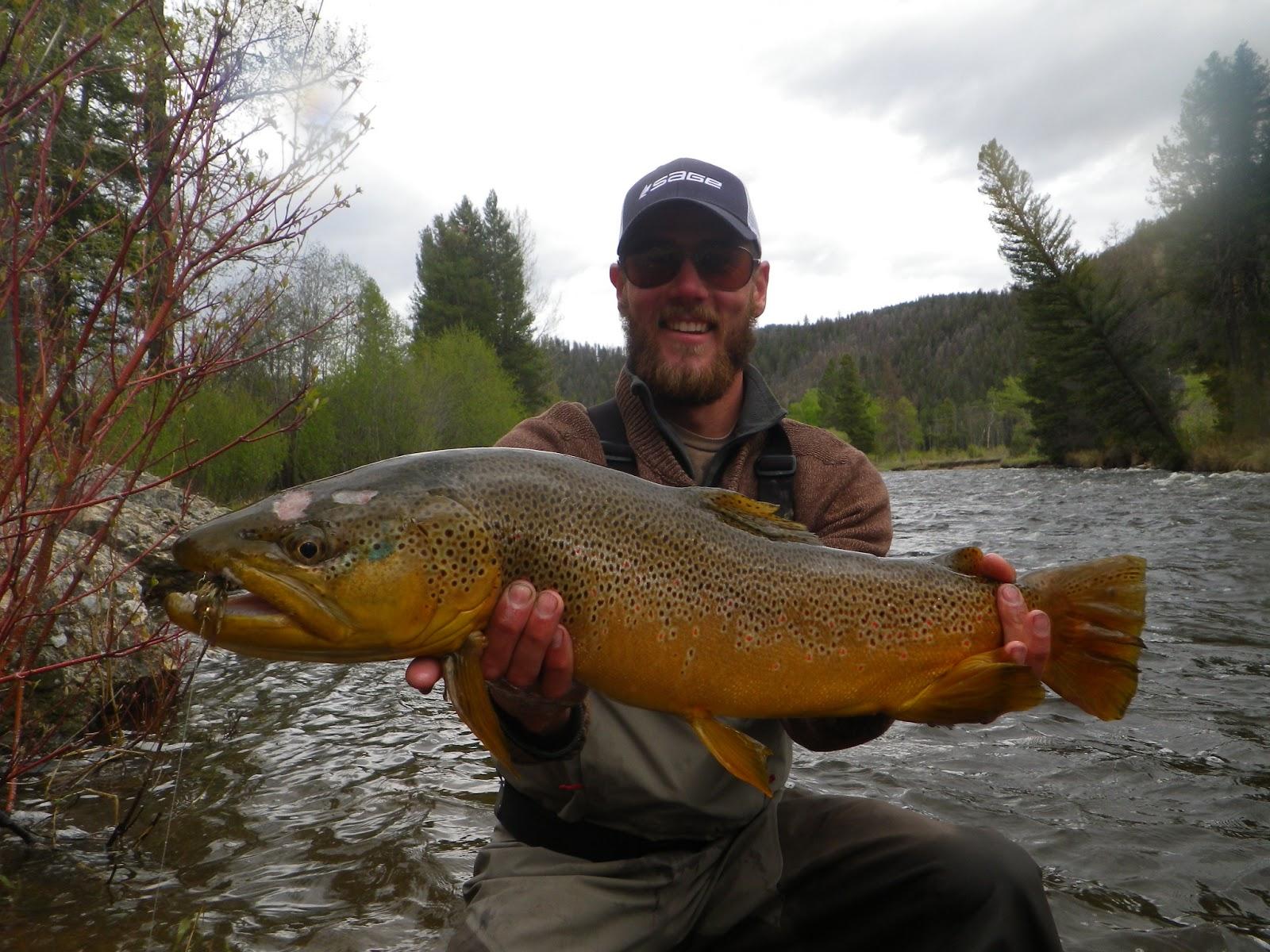 How do you define big montana hunting and fishing for Rock creek fishing report
