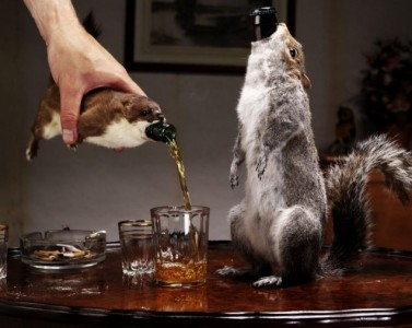 (martinisandhotdogs.com)