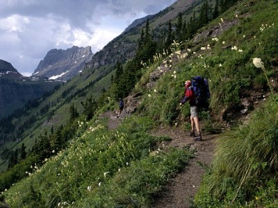 highline-trail-glacier-national-park_53681_600x450
