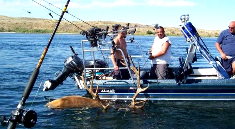 fishing at fort peck reservoir for elk montana hunting
