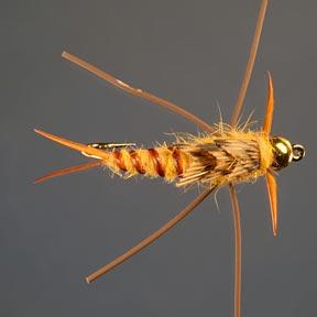 (flyfishinginsidernewsletter.com)