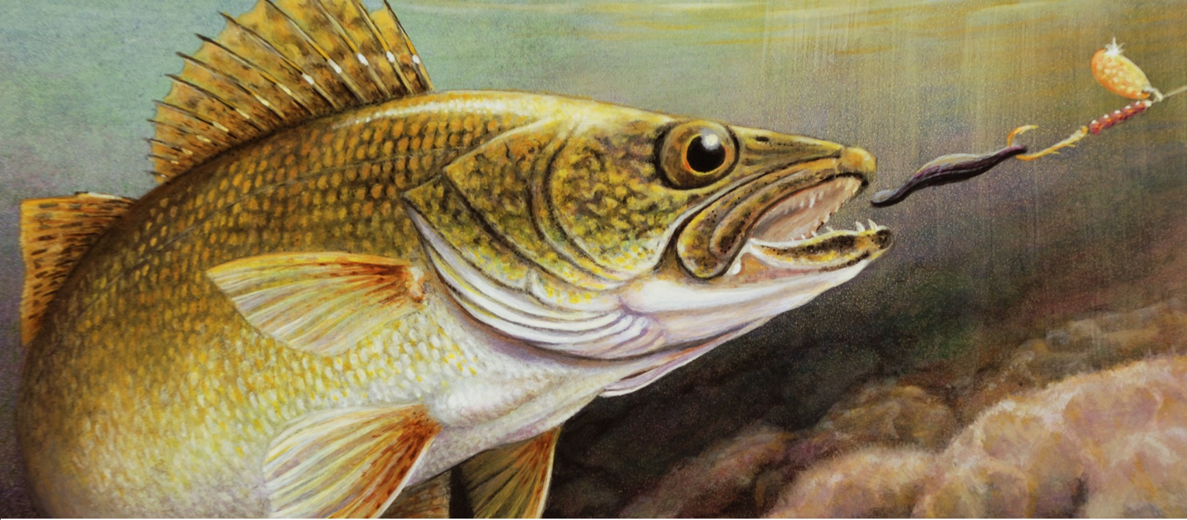Results from the 2013 fall classic walleye tournament on for Best time to fish for walleye