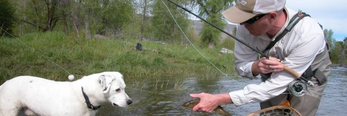 Fly-fishing-banner6