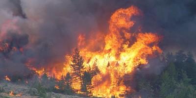 Montana-Wildfire