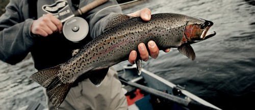 Bozeman butte recreation report by bob ward and sons 8 for Bozeman fishing report