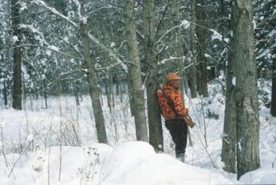 hunt_17_deer_snow_09-17-2009_BHH01V5_t470