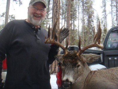 Mike Stephens - whitetail buck