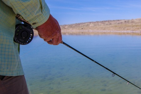 Brown s lake fishing report 5 montana hunting and for Hunting and fishing forecast