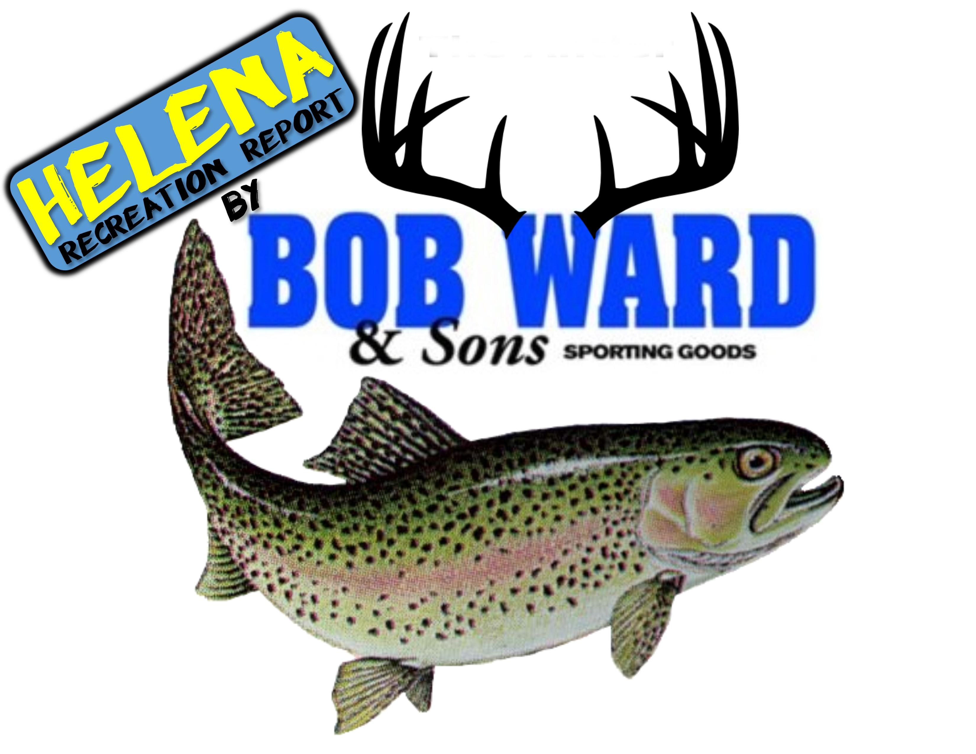 Montana fish wildlife parks deer elk antelope for Fish wildlife and parks