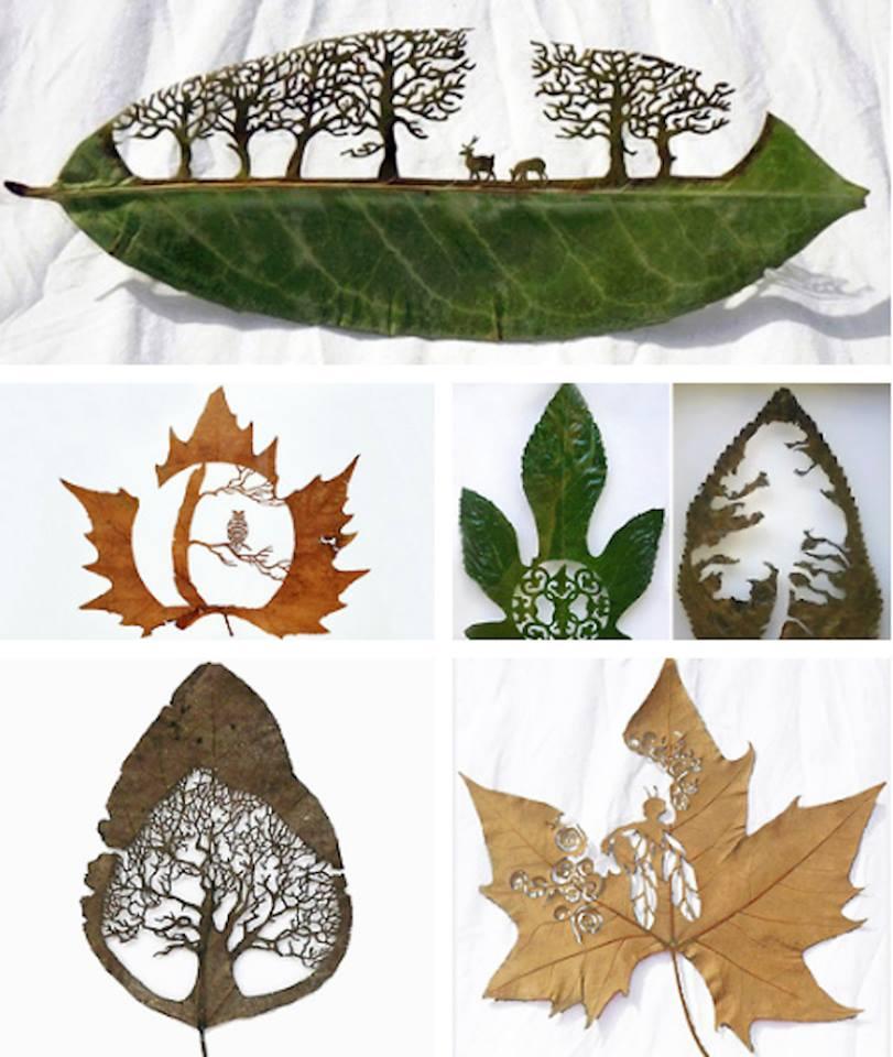 leafart
