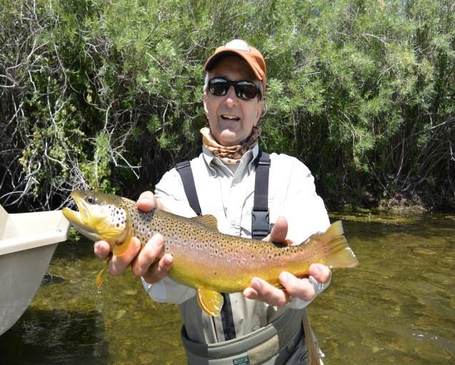 Beaverhead river fishing report by fishtales for Beaverhead fishing report
