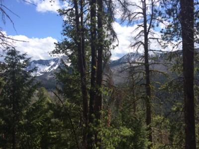 Pintler Wilderness