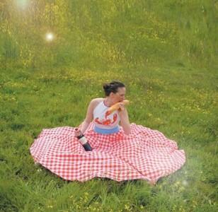 picnic cloth dress