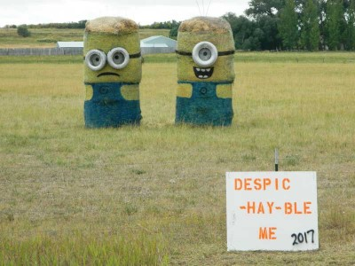 Despic-Hay-ble-Me-2017