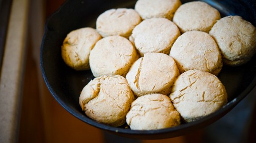 bear-fat-biscuits-main