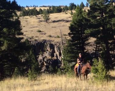 horseyr