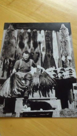 A Trapper in Alaska with his years take of furs.  circa 1930  Photo by Rick Peacock