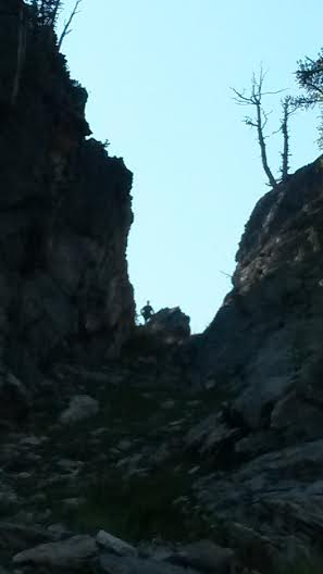 mountaingoat2