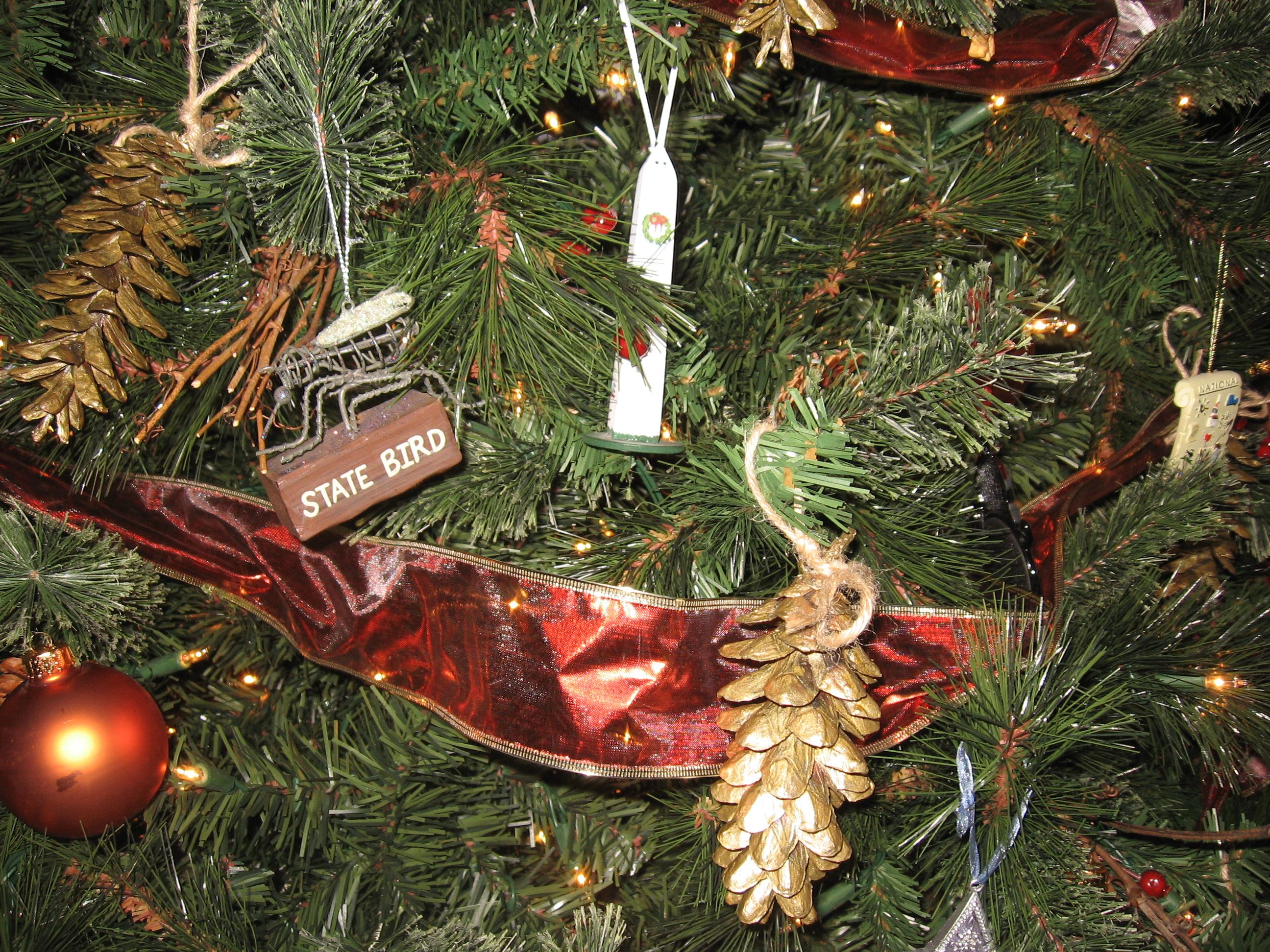 Hunters Christmas Tree Farm