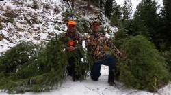 Hero Shot Christmas Tree