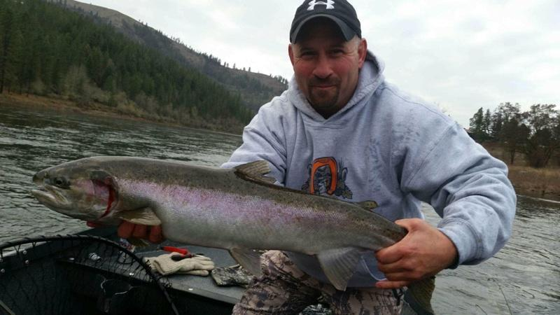 idaho steelhead fishing montana hunting and fishing