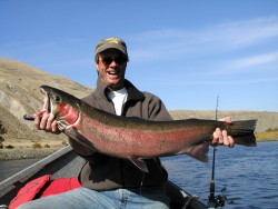 Big-Colorful-Steelhead-photo-credit-Exodus-Wilderness-Adventures