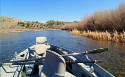 boatfishing2