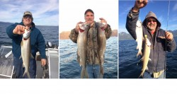 fishmish5