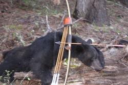 Spring hunting 2009 1288