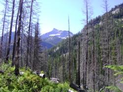 spring hiking 072