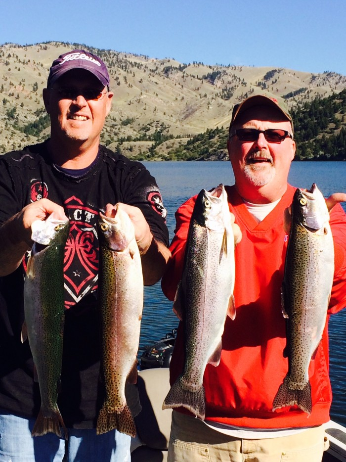 Hammering Holter Trout Montana Hunting And Fishing